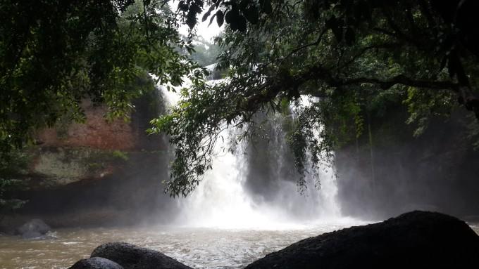 猴子森林山水背景图片