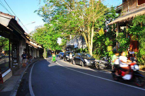 巴厘岛乌布皇宫+乌布市场+脏鸭餐+圣泉寺+田园下午茶+晚餐4国料理自助