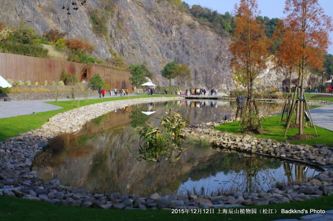 松江老郁-2015年 上海辰山植物园 秋景赏