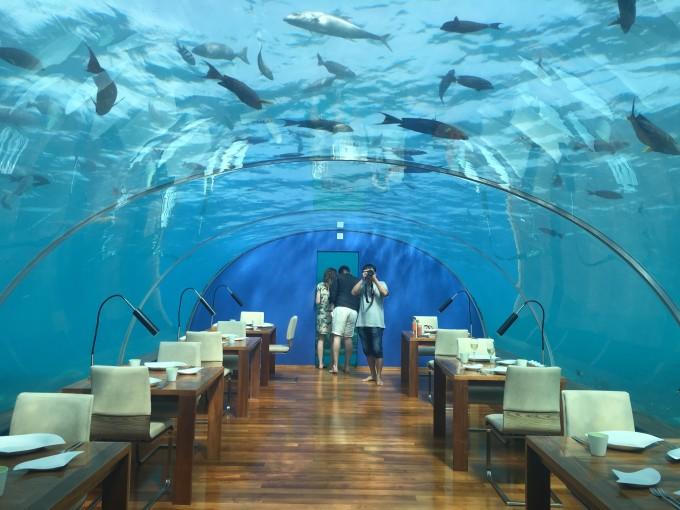 马尔代夫港丽岛海底餐厅