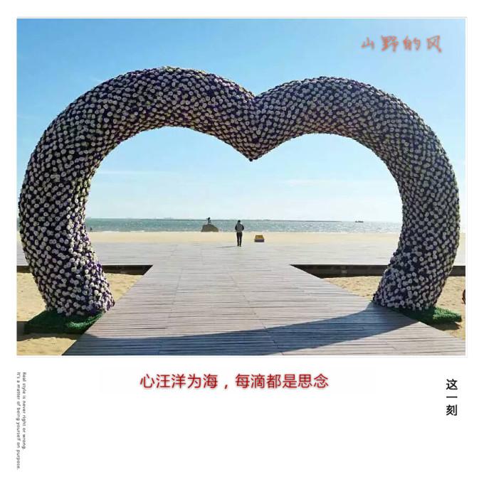总长度近10公里的秦皇岛亲海木栈道,据说是中国最长的亲海木