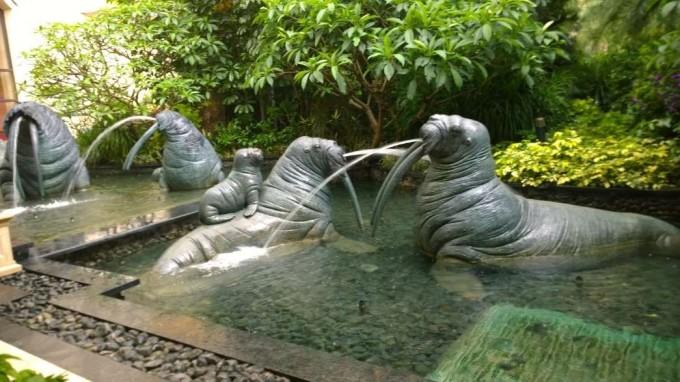 火烈鸟园上广州长隆野生动物园的遗憾