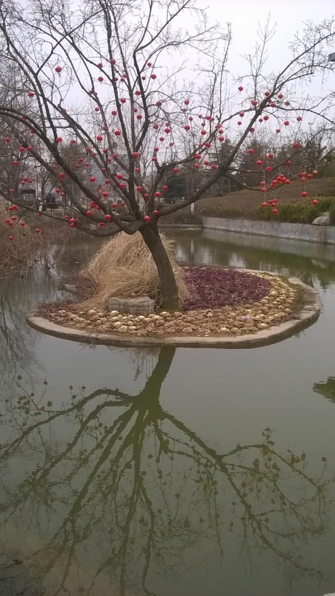 徐州龟山景区半日游