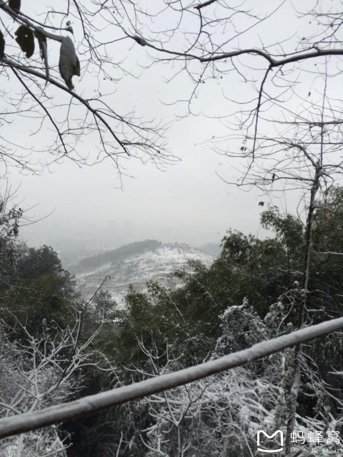 缙云山雪,重庆旅游攻略 - 蚂蜂窝